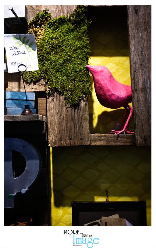 Pinkbird